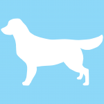 hund10bl