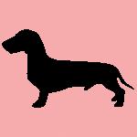 hund11p