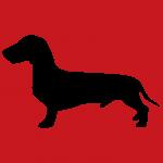 hund11r