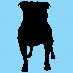 hund1bl