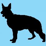 hund4bl
