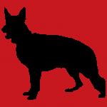 hund4r