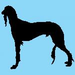hund5bl