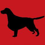 hund8r