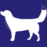 hund9m