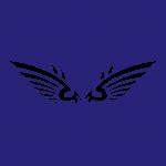 wing3m