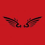 wing3r